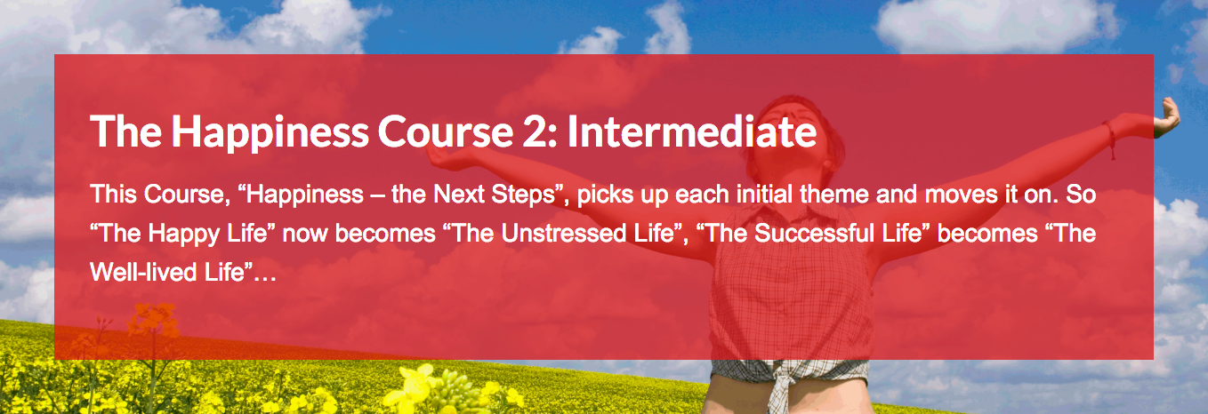 Intermediate Course